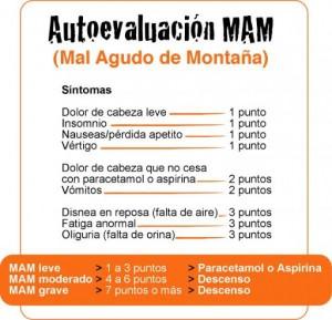 MAM 2